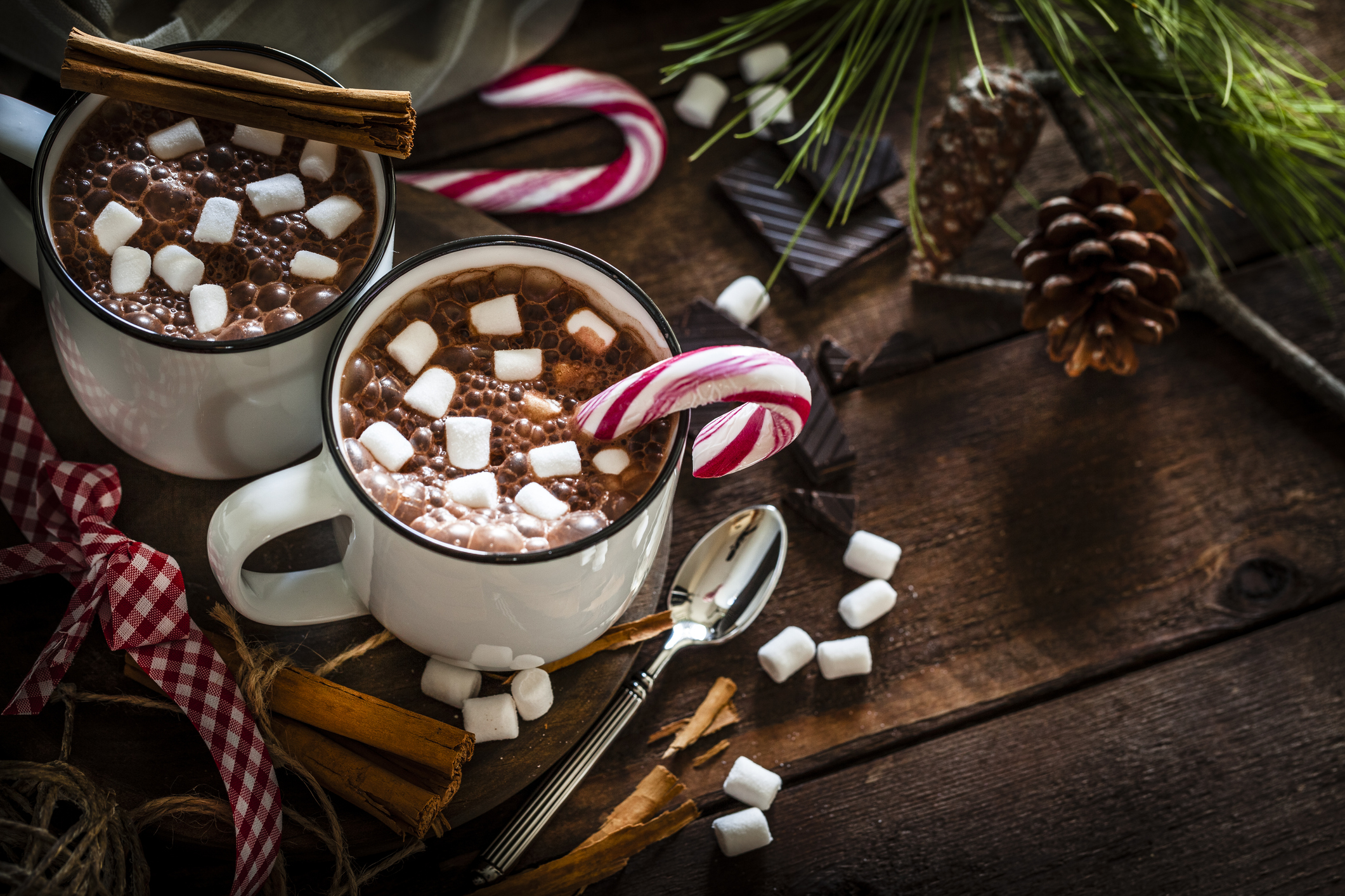 How to Leverage the Holiday Season in Your Practice Review of